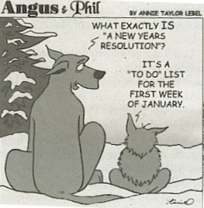 2013 New Years Resolution