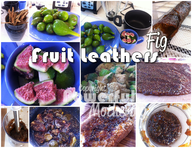 Fig Fruit Leather and Fig Jam