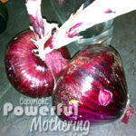 Raw Onion Wraps Recipe Organic Red Onions