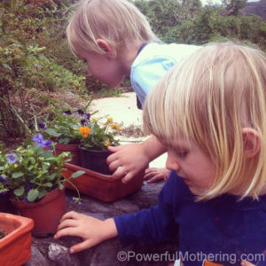 14 Fun Preschool Activities and Crafts - Getting into the garden