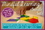 Mindful Learning eBundle