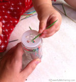 Fine Motor Skills: Spice Bottle + Toothpicks