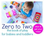 Zero to Two the Book of Play