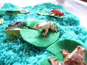frogs on felt lily pads