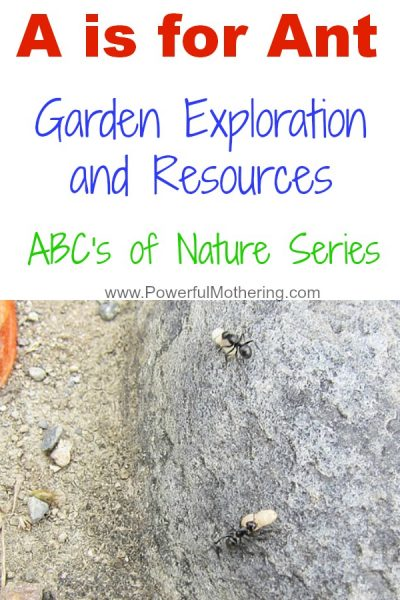 A is for Ant – Garden Exploration and Resources