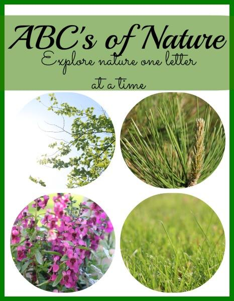 abc of nature ideas