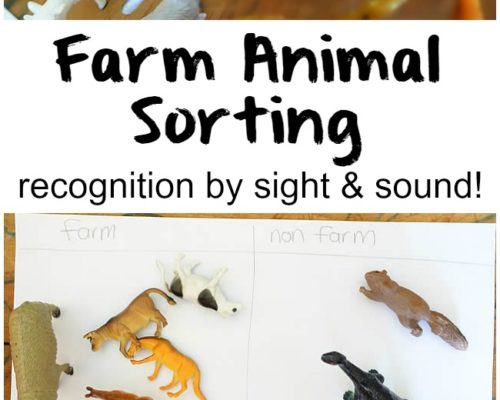 Farm Animal Sort