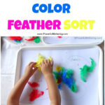 Quick & Easy Color Feather Sort from PowerfulMothering.com
