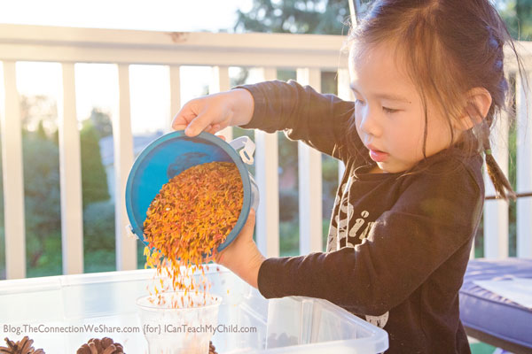easy-fall-sensory-bins