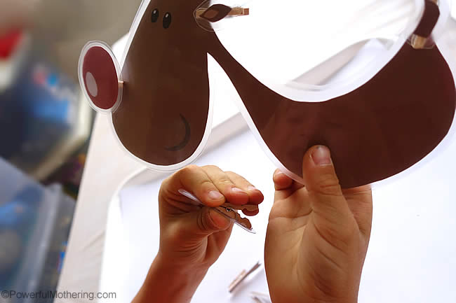 learning the anatomy of a reindeer