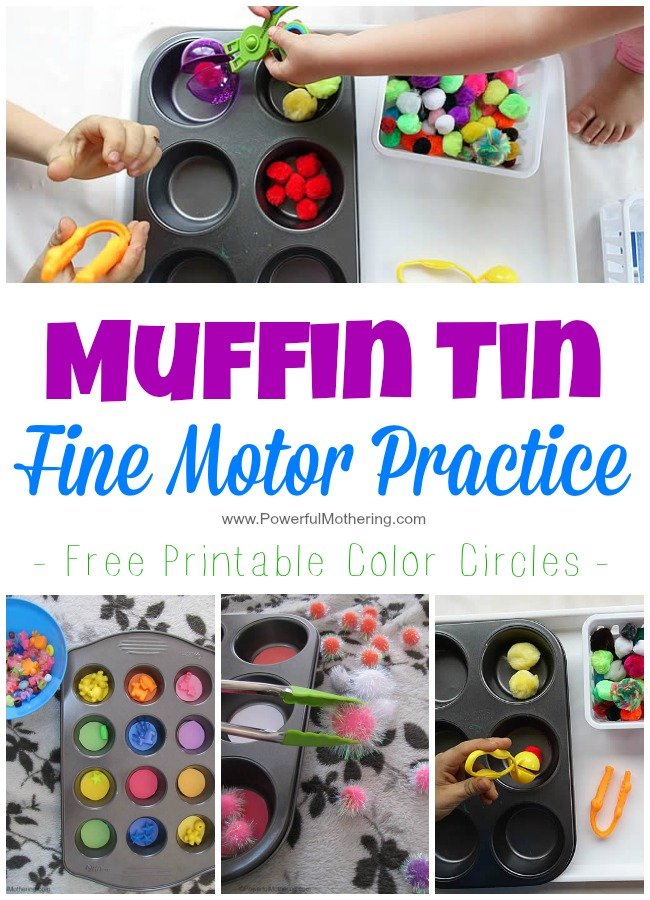 Muffin Tin Fine Motor Practice on powerfulmothering