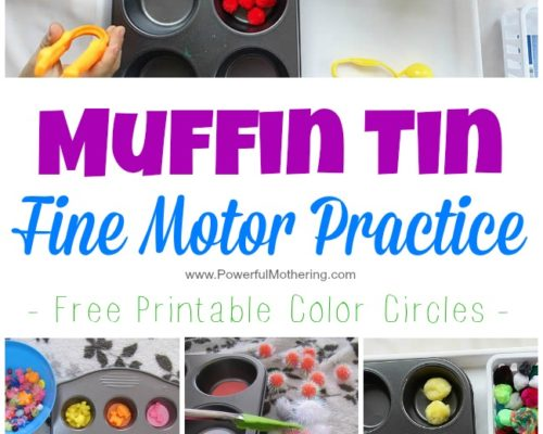 Muffin Tin Fine Motor Practice (includes free printable color disks)