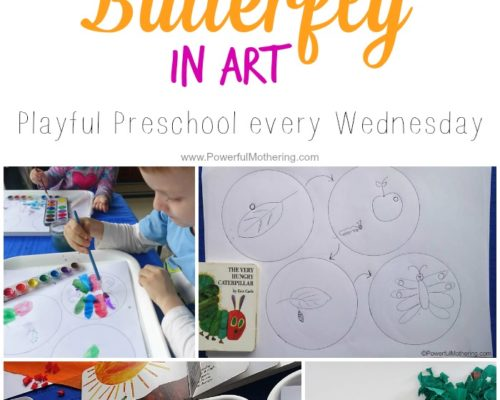 Life Cycle of the Butterfly in Art