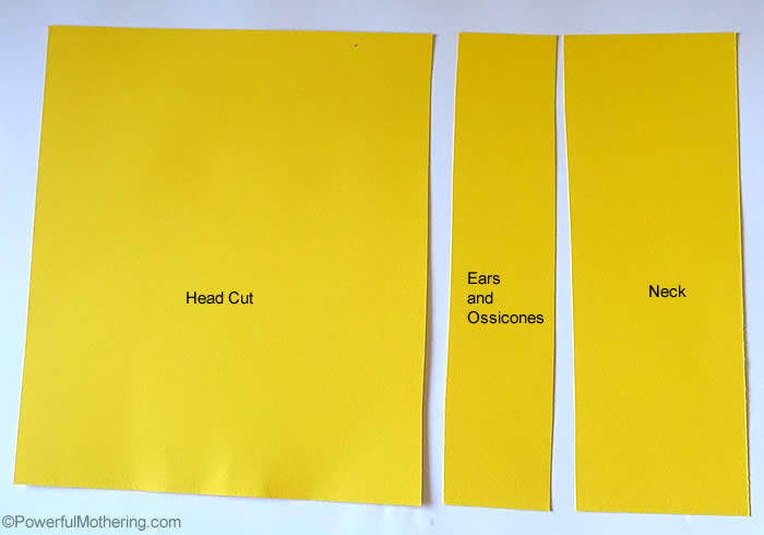 paper sizes to cut out