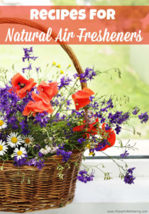 Recipes for Natural Air Fresheners