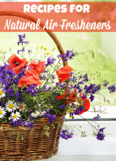 recipes for natural air fresheners from powerful mothering