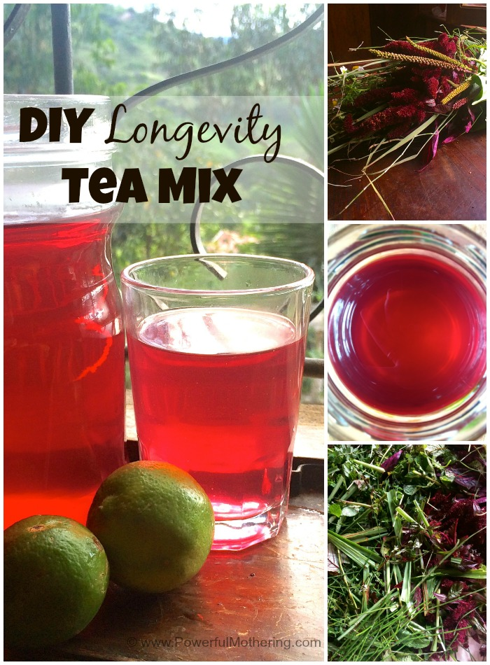 DIY Longevity Tea Mix