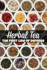 Herbal Tea the First Line of Defense