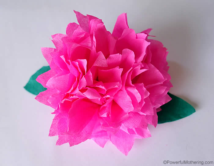 Paper flower making video boatremyeaton how to make crepe paper flowers video tutorial mightylinksfo
