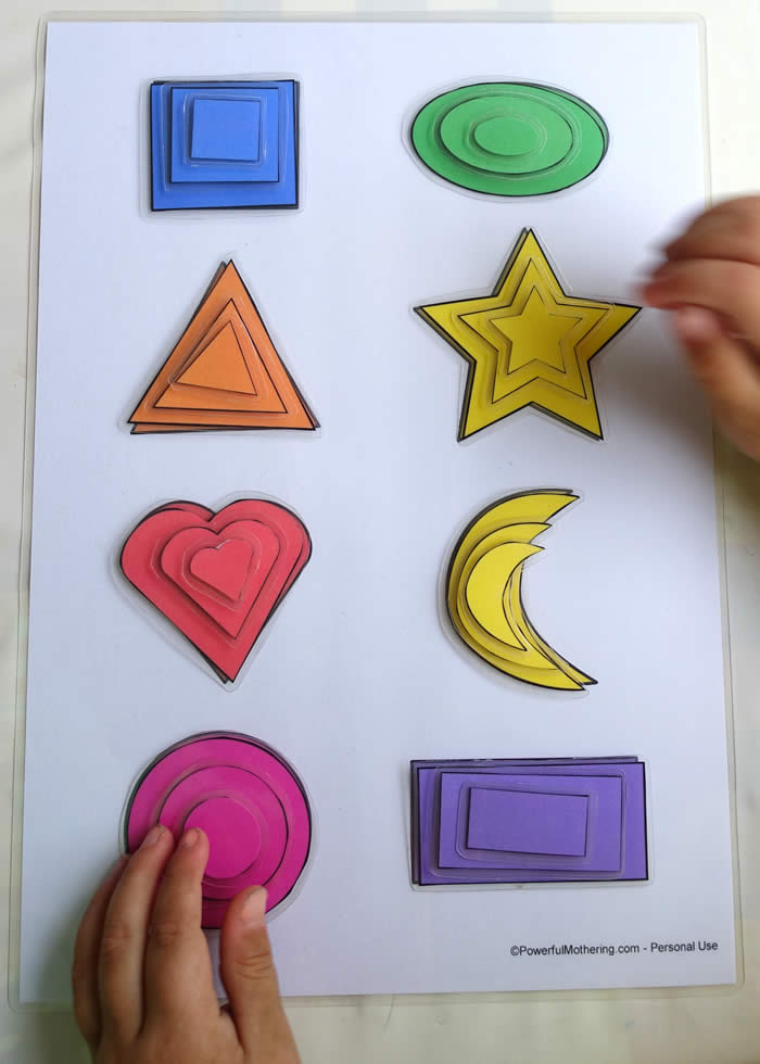 Printable Shape Matching And Size Sorting Activity