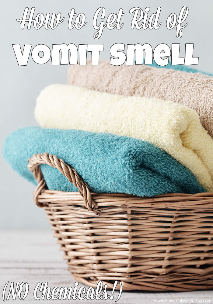 How To Get Vomit Smell Out Of Carpet >> How To Get Rid Of Vomit Smell No Chemicals