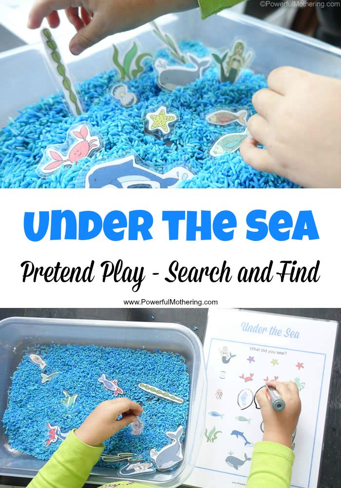under the sea theme