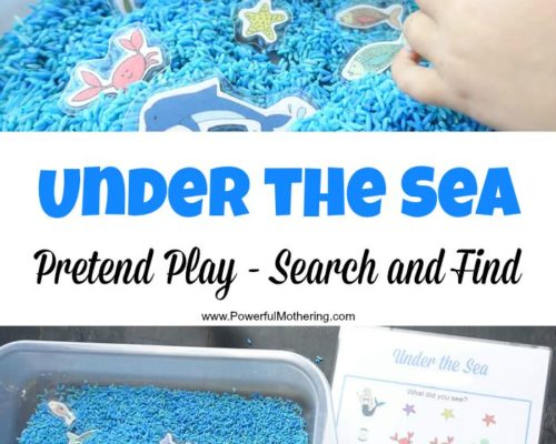 Under the Sea Pretend Play plus Search and Find
