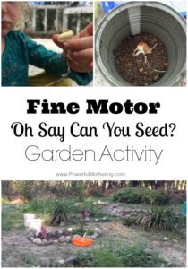 Fine Motor Oh Say Can You Seed? Garden Activity