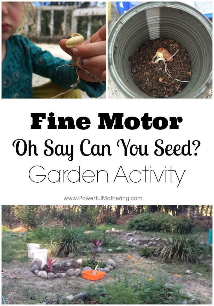 Fine Motor Oh Say Can You Seed Garden Activity