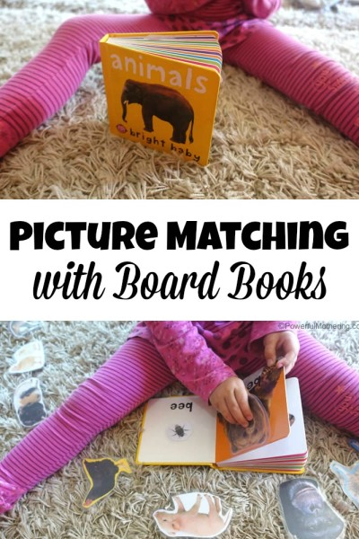 Picture Matching with Board Books