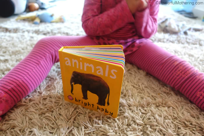 animal book for picture matching