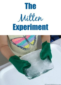 The Mitten Experiment