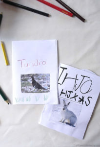 Home-made Books: Tundra