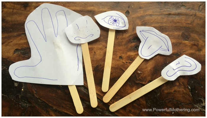 5 senses popsicle sticks