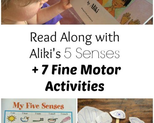 5 Senses Read Along and Fine Motor Activities