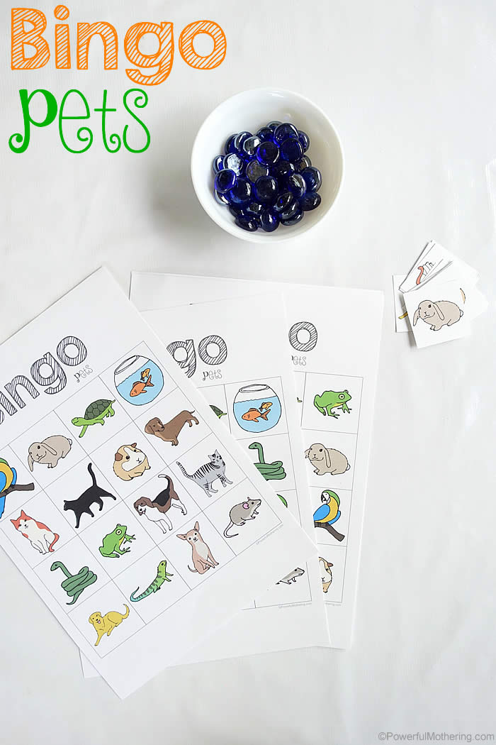 bingo pets a game for preschoolers