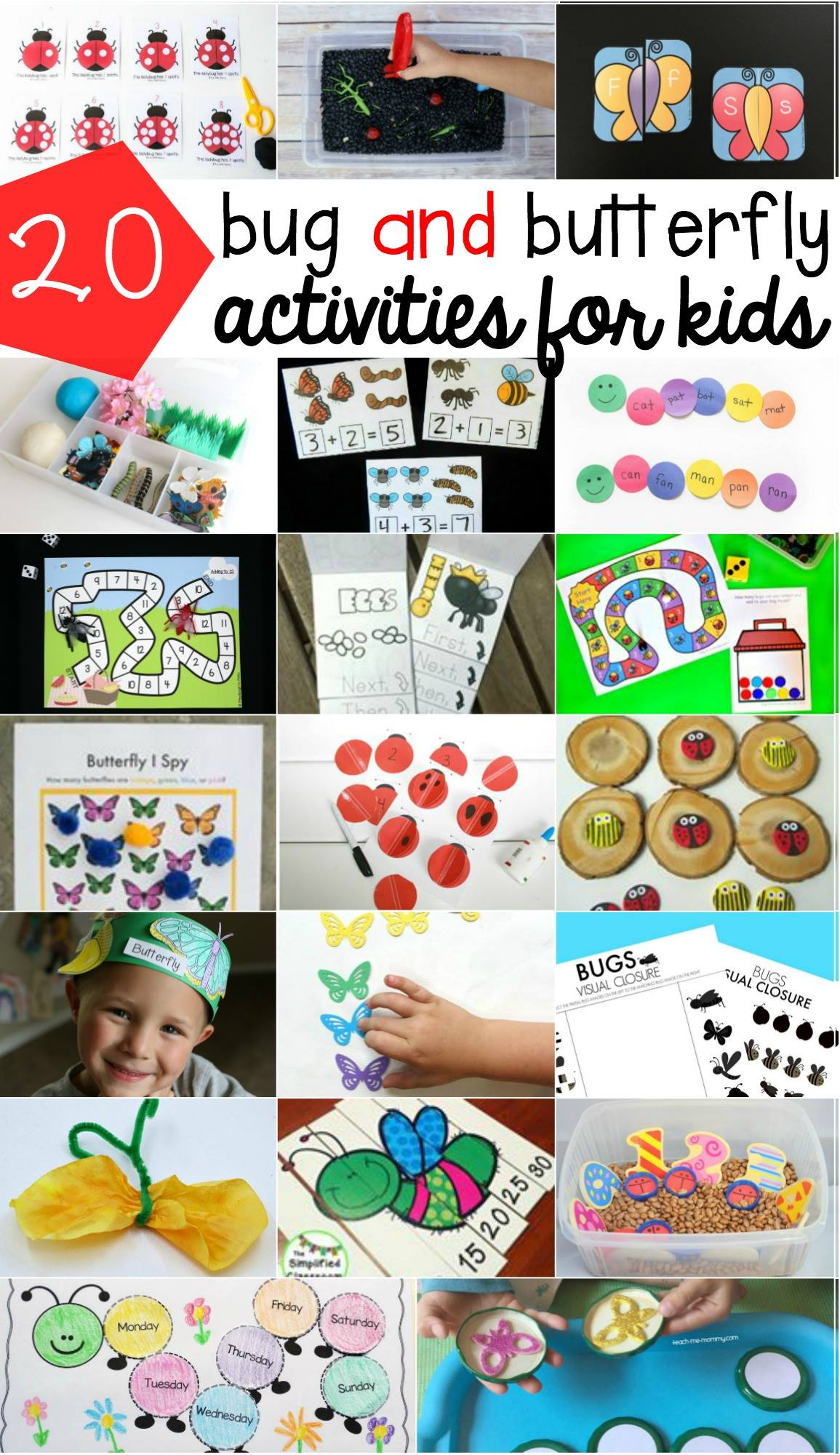 butterfly and bug activities for preschoolers