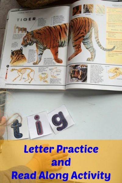 Letter Recognition and Read Along Book Activity