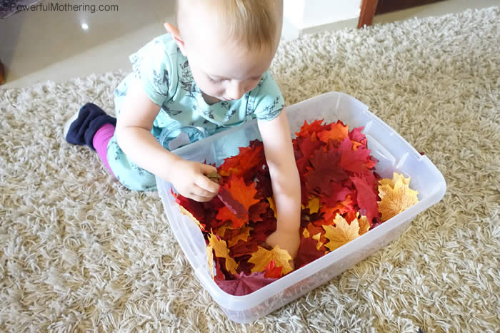Try these simple fall leaf activities with your toddler to teach them colors, size, & the change of seasons. Use real or fake leaves for these activities.