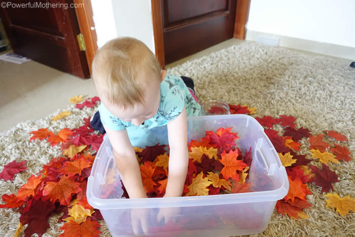 sensory bin with fall leaves