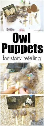 Owl Puppets