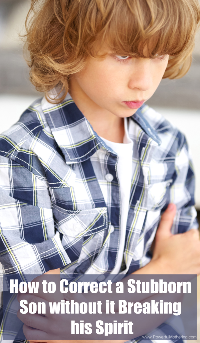 How To Correct A Stubborn Son Without It Breaking His Spirit Raising Boys