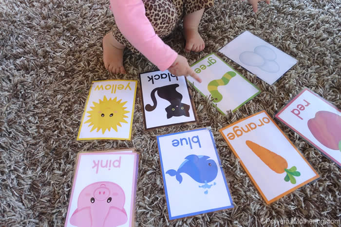Free Printables Color Cards for Toddlers