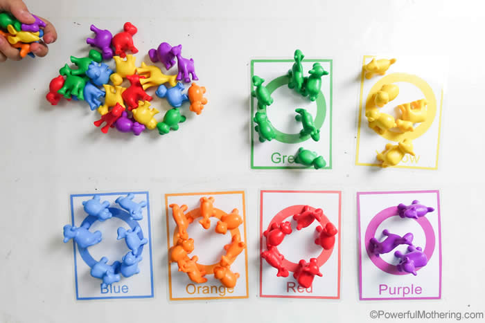 Counting And Color Sorting For Toddlers