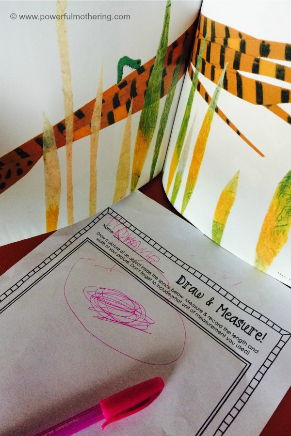 Draw And Measure Activity