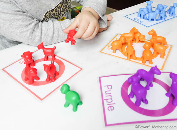 Manipulative Color Sorting For Toddlers
