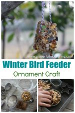 Winter Bird Feeder Ornaments