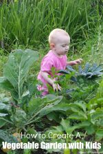 How to Create A Vegetable Garden with Kids