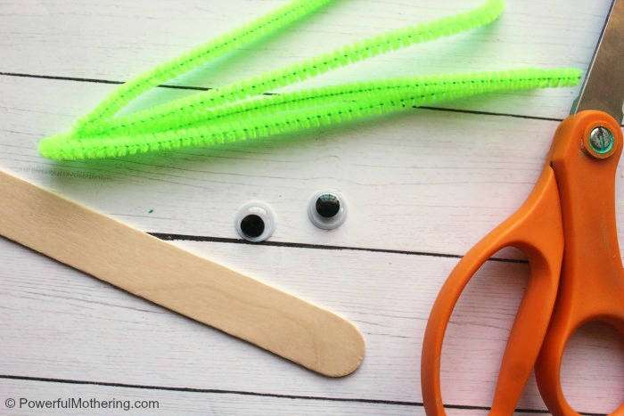 Materials To Make A Pipe Cleaner Inchworm Craft
