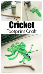 Footprint Preschool Cricket Craft